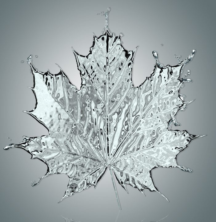 Craze Or Crazy? What You Need to Know about Maple Water